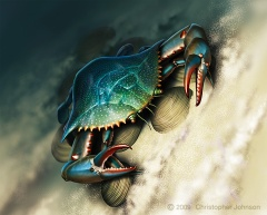 Illustration of a blue claw crab and clams, underwater on a sandy bottom.