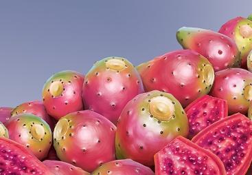 A pile of prickly pears. Digital art.