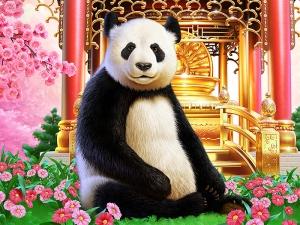 Panda and Golden Temple Illustration.