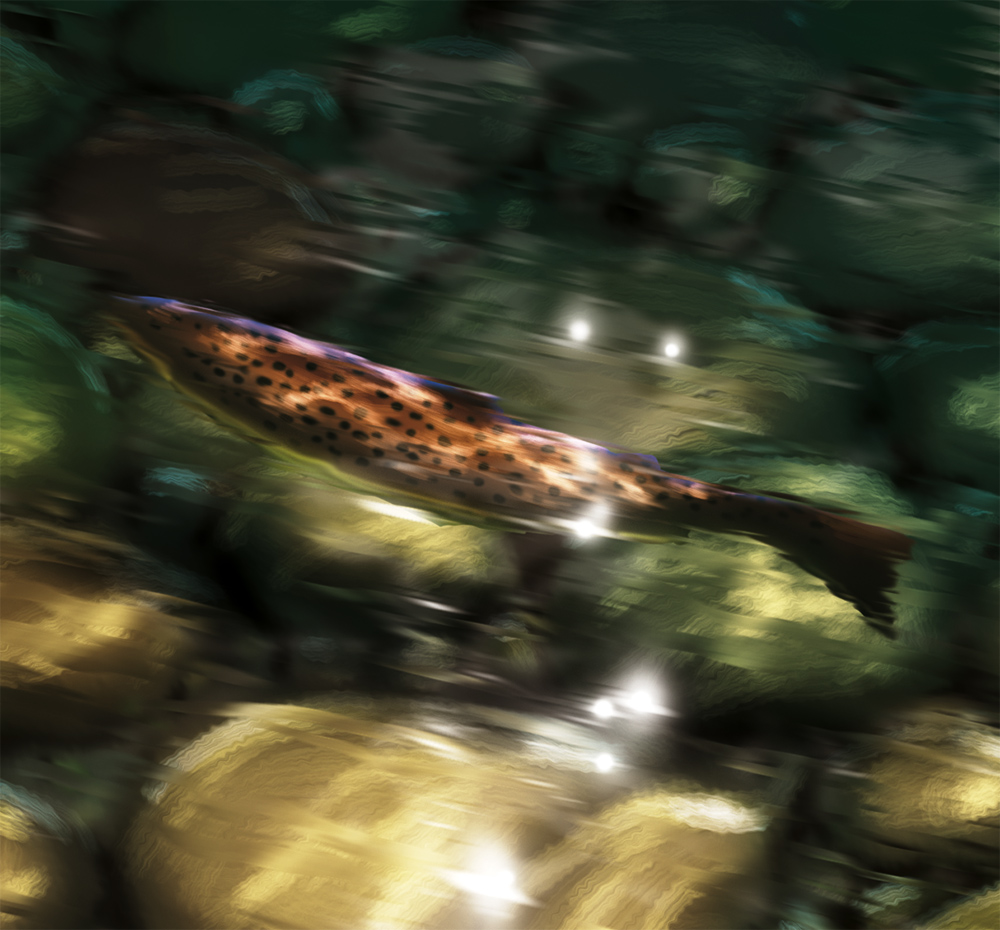 Digital painting of a Brown Trout in a shimmering sunlit stream.